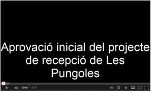 Video Ple març pungoles